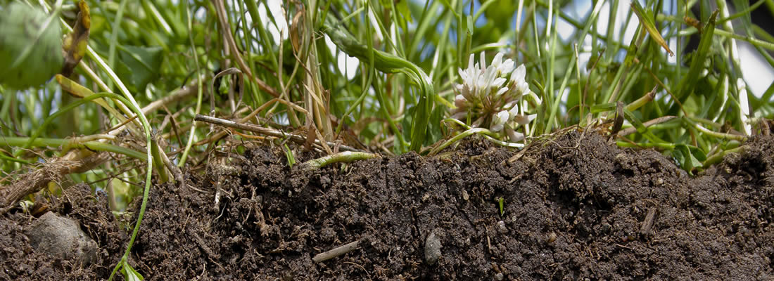 Monograph on Fertilizer Use and Management practices  for a wide range of Crops in Nigeria